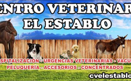 VETERINARIAS EN ARMENIA